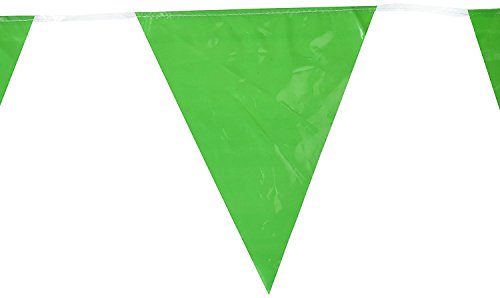 Indoor/Outdoor Pennant Banner (green) Party Accessory (1 count) (1/Pkg)