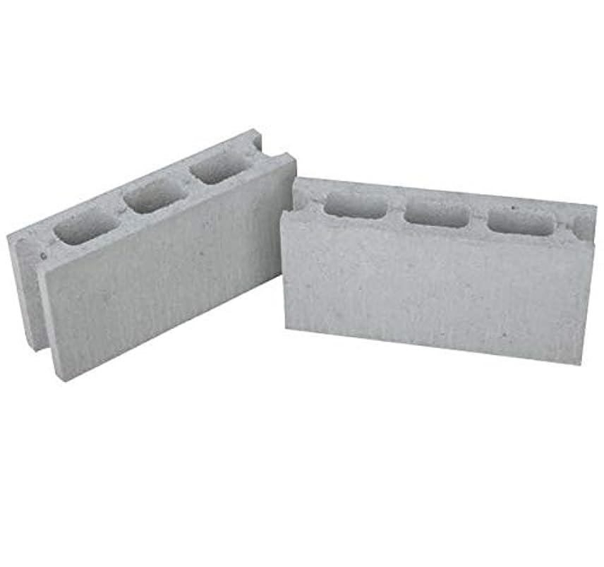 台風世界的に経営者コンクリートブロック 基本 2個セット 100幅 10cm C種 JIS コンクリート ブロック