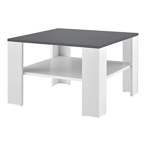 [en.casa] Tavolino da Salotto con Ripiano 60 x 60 40 cm Tavolino Basso Tavolino da caffè Portariviste - Bianco/Grigio Scuro