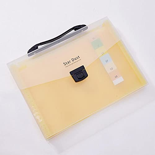 TOMOP - Cartella portadocumenti espandibile, a fisarmonica, con manico, 13 tasche, formato A4, a fisarmonica, per ufficio, scuola, affari