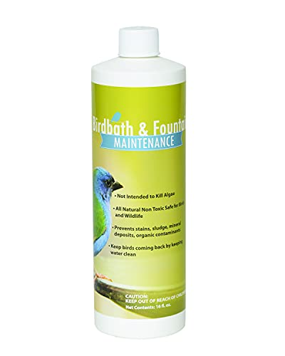 Sanco Bird Bath & Fountain Maintenance, Safe Fast-Acting Enzyme-Based Formula Will Extend The Life of Your Water Feature, Aid in Maintaining a Balanced Ecosystem, 16 oz