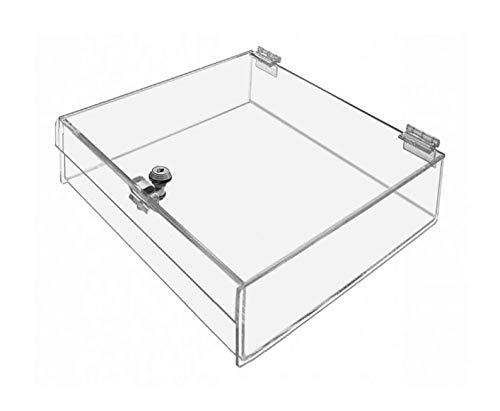 Marketing Holders Rectangular Locking Countertop Tray Jewelry Display Case Swap Meet Tabletop Display (14'W x 14'D x 4'H, Clear)