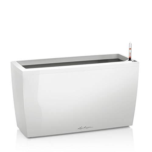 Lechuza Cararo Premium, Weiß, Hochwertiger Kunststoff, Inkl. Bewässerungssystem und 2 Rollen, Innen- und Außenbereich geeignet, 18800