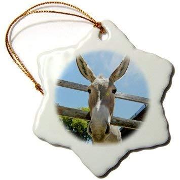 Dekofigur Schneeflocke zum Aufhängen, Esel in einem Bauernhof, Weihnachtsbaum, Geschenk zum Aufhängen