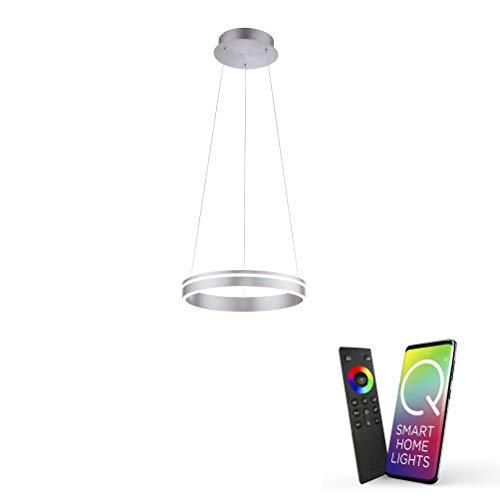 Paul Neuhaus Q-VITO LED Pendelleuchte, Works with Alexa – Smart Home, Fernbedienung CCT warmeiß – kaltweiß (40cm Silber)