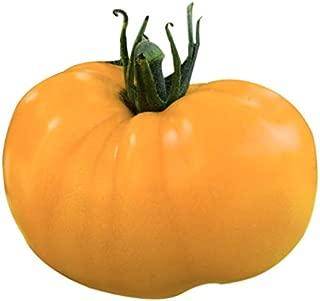 azoychka heirloom tomato