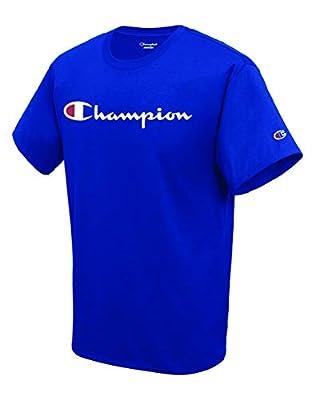 Champion Men's Classic Jersey Script T-Shirt, Surf the Web2, Medium by Champion