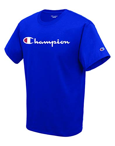 Champion Men's Classic Jersey Script T-Shirt, Surf the Web, Small