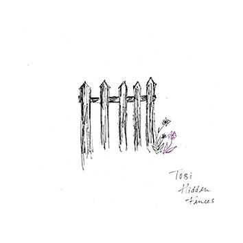 Hidden Fences (demo)