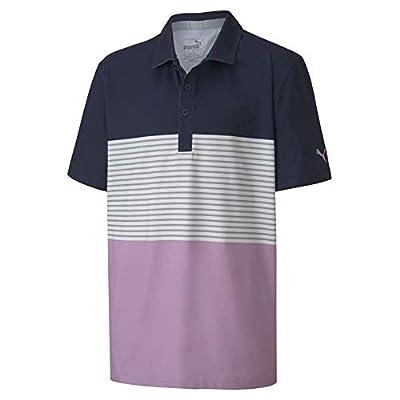 PUMA Golf 2020 Boy's Taylor Polo, Lupine, Large