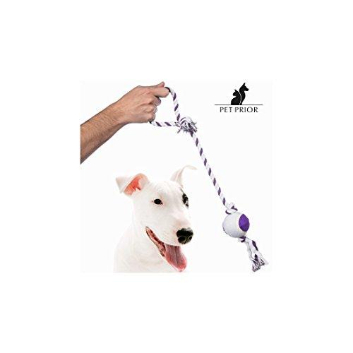 Pet Prior V0200849 hondenriem met bal
