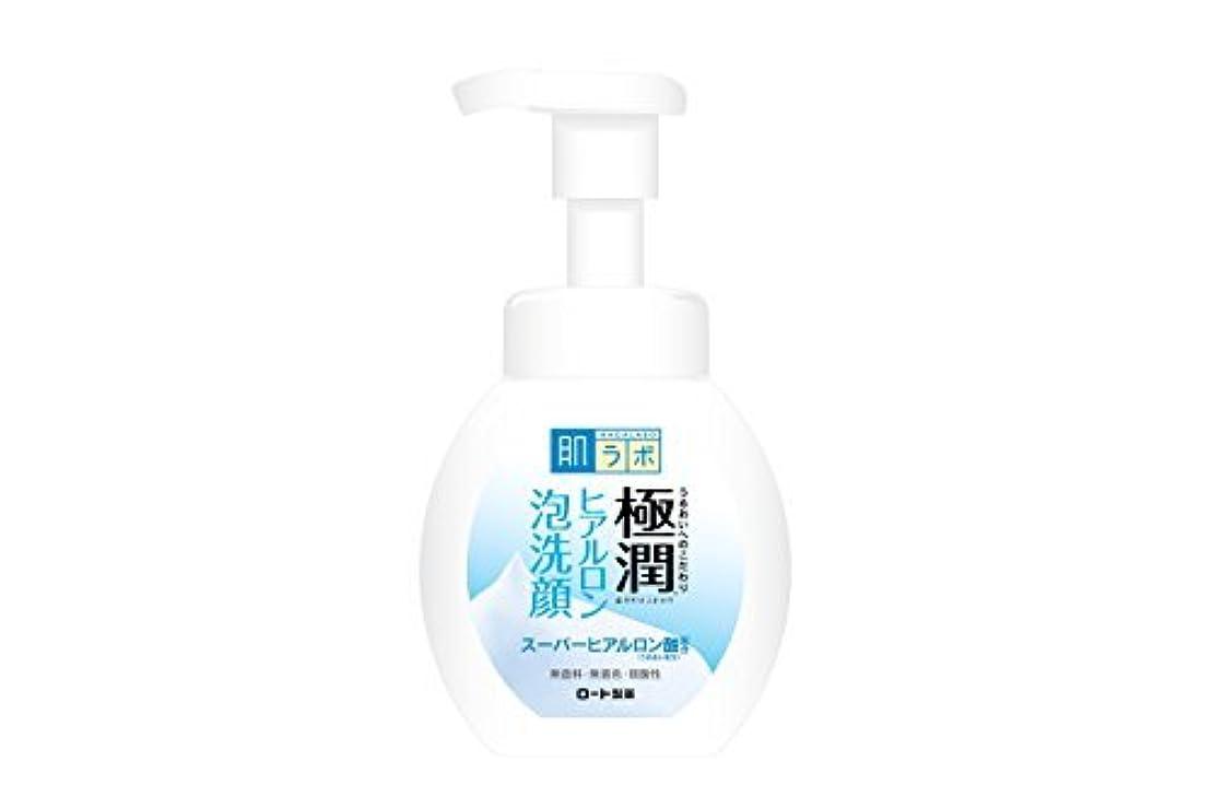 敬意を表して牧師マイク肌研(ハダラボ) 極潤 ヒアルロン 泡洗顔 160mL