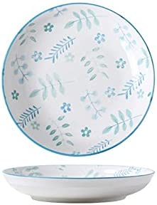 Max 85% OFF Dinner Plates 7.09inch Ceramic Stackable Fees free!! Porcelain