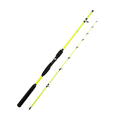 HIOD Fishing Rod Pole Portable Spinning for Lake River Fishing Saltwater (Green Orange),Green,1.6M