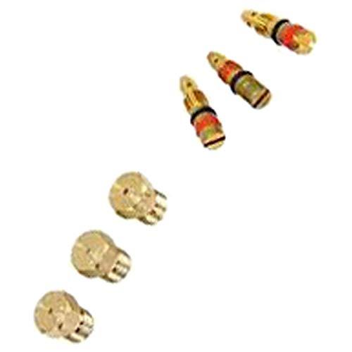 Juego de inyectores de gas butano/propano (296279-20285) Horno, cocina 00603549 Bosch