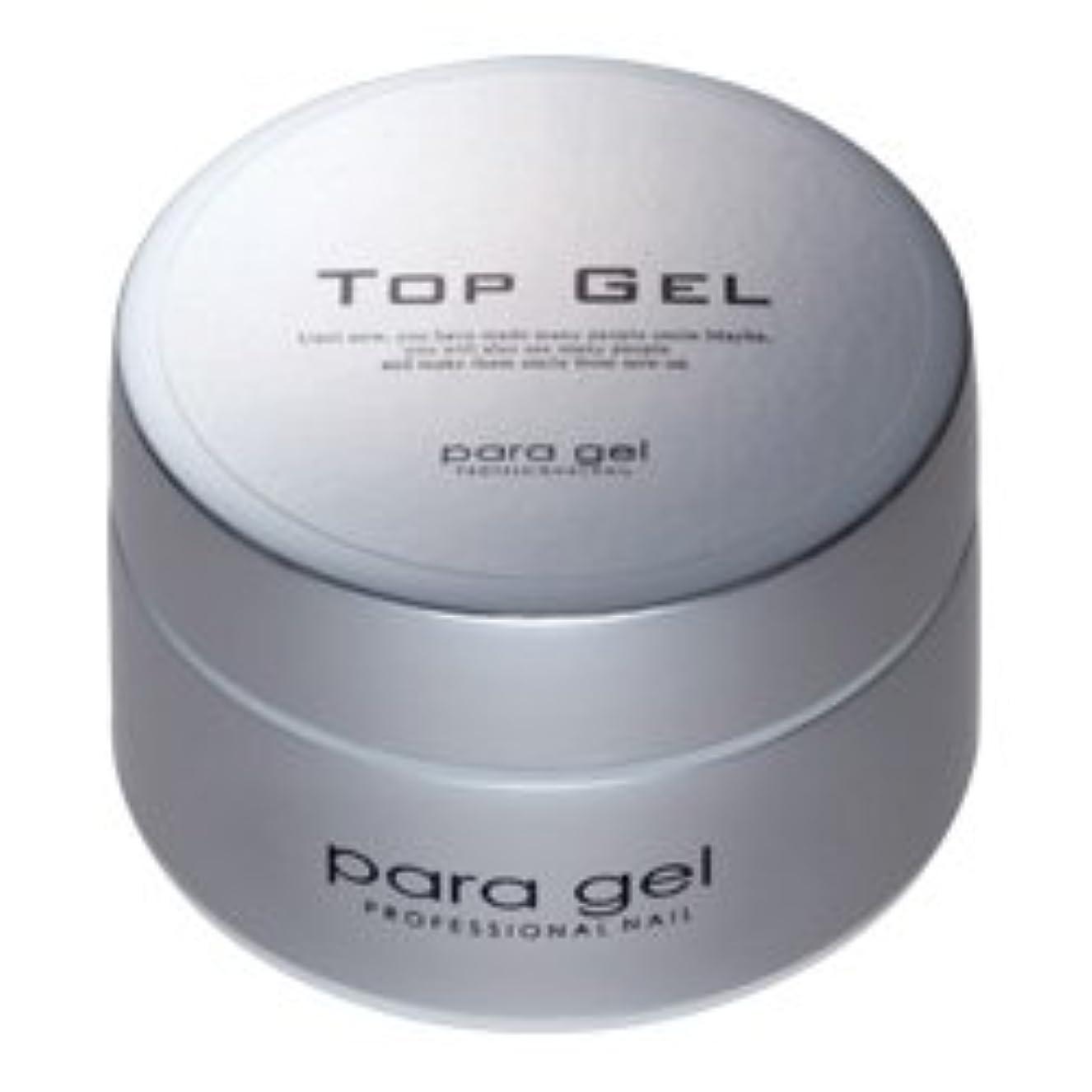 土器プランターエール★para gel(パラジェル) <BR>トップジェル 10g