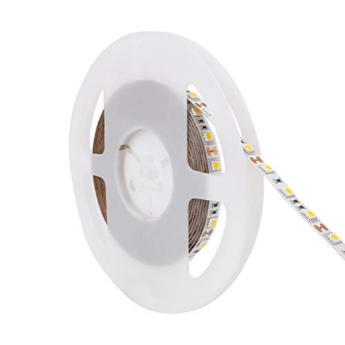 LEDKIA LIGHTING Ruban LED 12V DC 60LED/m 5m IP20 Blanc Froid 6000K - 6500K