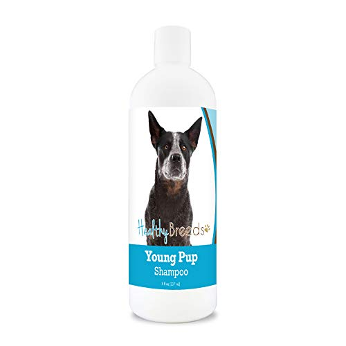 Healthy Breeds Australian Cattle Dog Young Pup Shampoo 8 oz