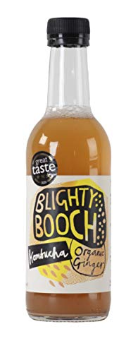 2020 Great Taste 3 Star Gold Award Winning Ginger Kombucha Tea from Blighty Booch | |6 x 330ml Bottles of Komucha | Live Probiotic |of&G Certified| Healthy Soft Drink | Naturally Fizzy