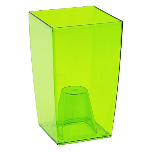 SANHOC Semi Pacchetto: Trannt Verde: Prosper Plast DUW120P-CPY2 12 x 12 x 20 cm Coubi Flower - Trannt GreenSEED