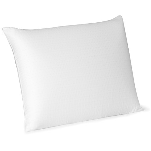 Beautyrest Latex Foam Pillow, Standard