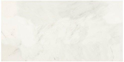 12 x 12, Argento Dal-Tile 12121P-FL08 Florentine Tile,