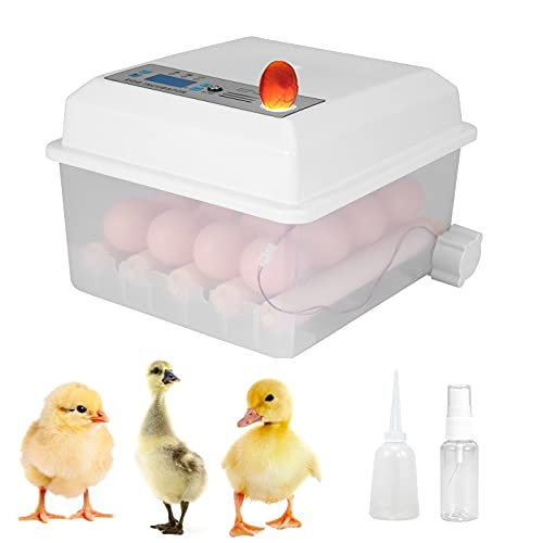 Incubadora de Huevos, Vogvigo Mini Incubadoras AutomáTicas Digitales de 16 Huevos, MáQuina Nacedora con Volteador Para Incubar Huevos de Gallina de Codorniz De Ganso de Pavo