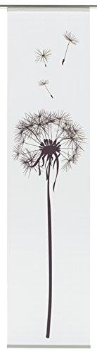 flaechenvorhang pusteblume