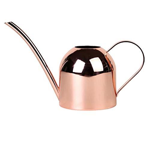 Jardinage Plante Bouteille Pot d'arrosage Appareil charnue Outil de Jardin de bonsaïs, Arrosoir Or Acier Inoxydable Pot à Long Bec intérieur Accueil (Color : Pink)