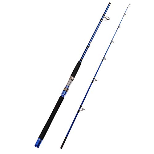 Top 10 best selling list for 7 fishing rod