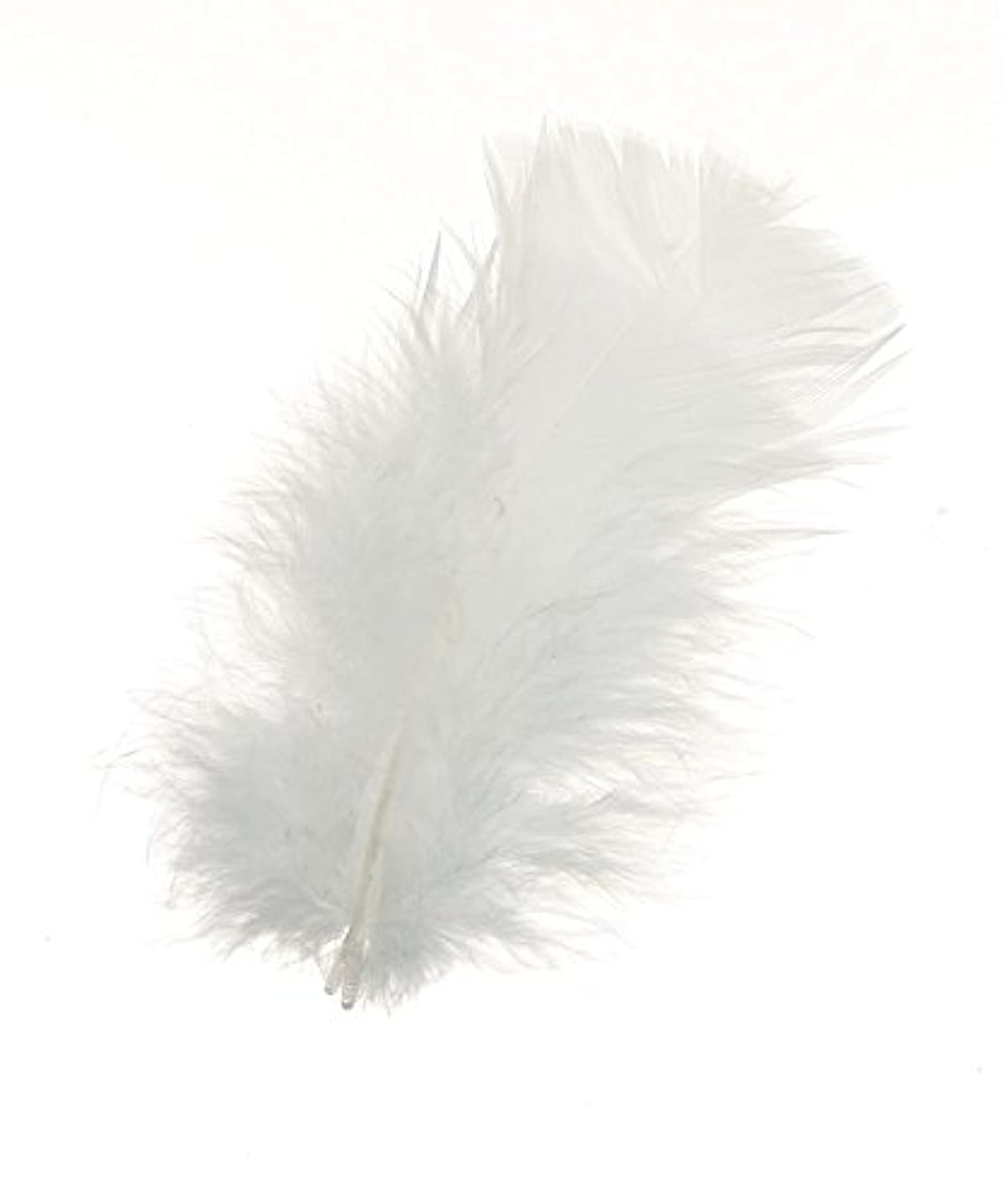 Darice All Purpose Feathers - White - 14 Grams