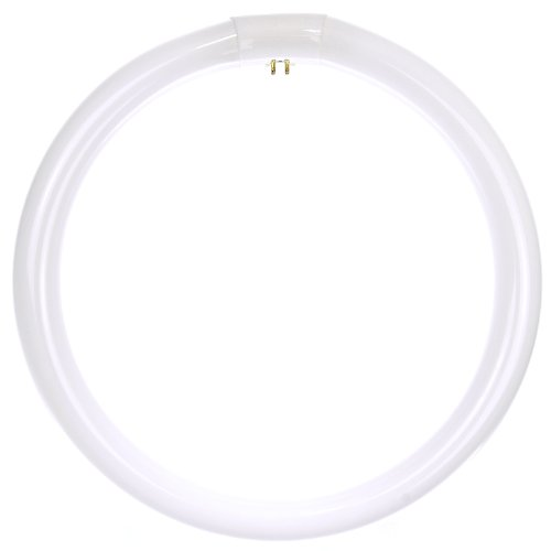 SunLite fc12t9/CW 32-watt FC T9 lámpara fluorescente lineal 4-Pin Base, color blanco frío, 32 W (30 cm), Daylight