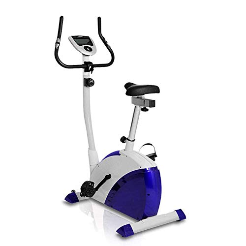 YAMMY Home Exercise Bike, Indoor Cycling Bike, Bicycle Trainer Cardio Fitness Machine, Spinning Exercise Bike Home Mute, Adjustable Seat Heig(Exercise Bikes)