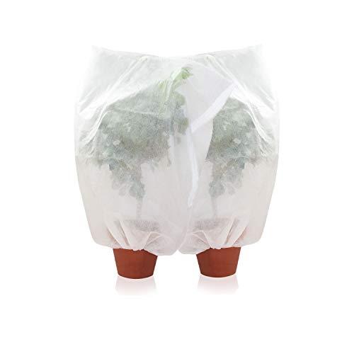 Amazy Schutzhülle für Pflanzen (2er Set | M) – Der praktische Kübelpflanzensack aus Vlies schützt empfindliche Topfpflanzen vor Frost, Wind und Niederschlag (100 x 80 cm)