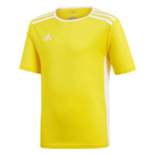 adidas Boys' Standard Entrada 18 Jersey, Yellow, Medium