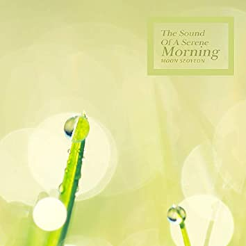The Sound Of A Serene Morning