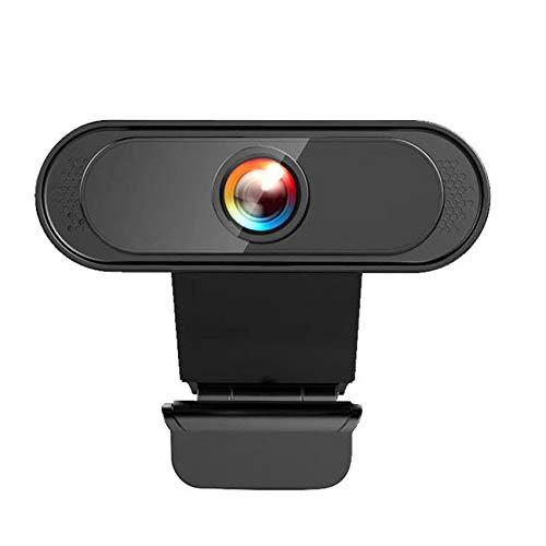 Rpanle Webcam 1080P con Microfono, Riduzione del Rumore, Video Camera USB 2.0 con Clip Regolabile per Videochiamate/Studio/Conferenza/Registrazione/Gioca a Giochi e Lavoro a Casa