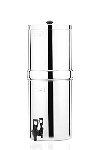 Butterfly Stainless Steel Water Filter, 34 litres with Double Candle, Silver, Rust Free, Premium Qualtiy
