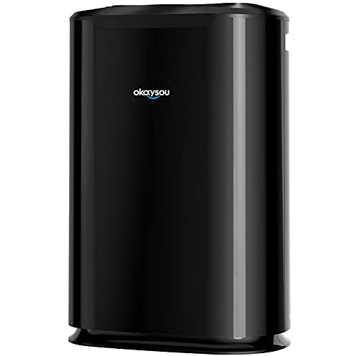 Okaysou AirMax8L Air Purifier with Washable...