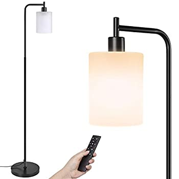 LED Floor Lamp,4 Colors Temperature Modern Light with Remote & Foot Control Industrial Standing Lamps with Hanging Jade Matte Glass Shade for Bedrooms,Living Room 9W Led Bulb Included ,Black