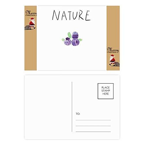 Postkarte mit Heidelbeer-Pflanze Soloinsel, Weihnachtsmann, 20 Stück
