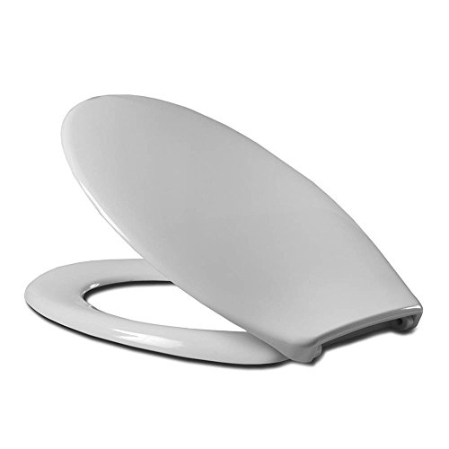 Price comparison product image Cedo 529482 Toilet Seat with Lid-rainbow beach with Standard Bügelscharnier White