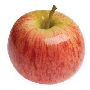 GALA APPLES ORGANIC FRESH PRODUCE FRUIT PER POUND