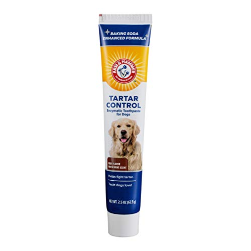 Arm & Hammer Advanced Care Enzymatic Toothpaste for Dogs