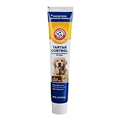 Arm & Hammer Dog Toothpaste - Best Dog Teeth Cleaning Products