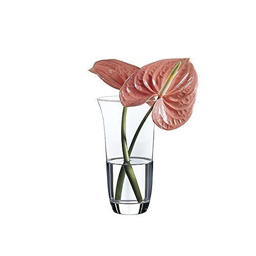 Unishop - Vaso di fiori in vetro, 21 cm di altezza, elegante e sofisticato