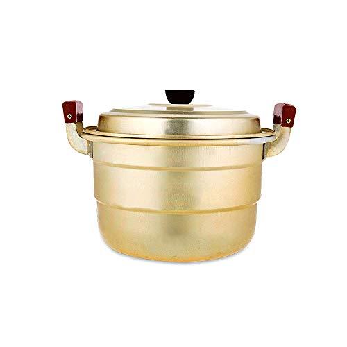 TJLSS Chaudières Double Vapeur marmite à Soupe Casseroles Cuisine Multi-Fonctionnelle Etuve Aluminium Pan Ravioli Vapeur Cuisinière Chaudière à gaz Alimentaire