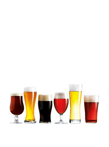 Assorted Craft Brew Beer Glasses (Set of 6)
