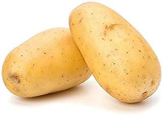 Potato GCC | Versatile & Delicious | Source Of Vitamins | Sweet & Mild | Healthy & Naturally Sweet | Premium Quality | Cle...