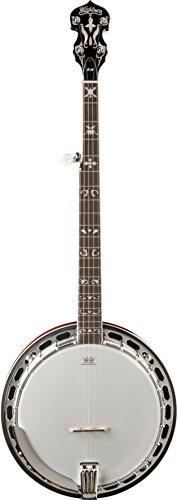 Washburn Americana Series B16K-D 5 String Banjo Sunburst